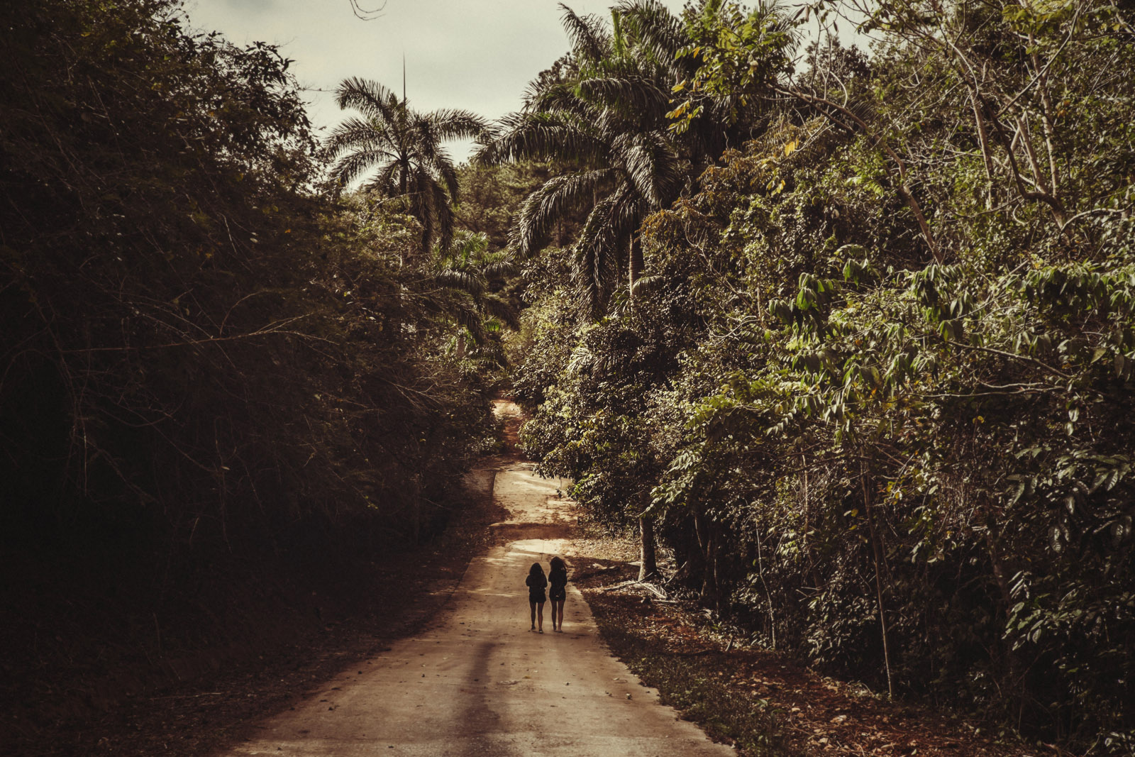 travel to trinidad 29