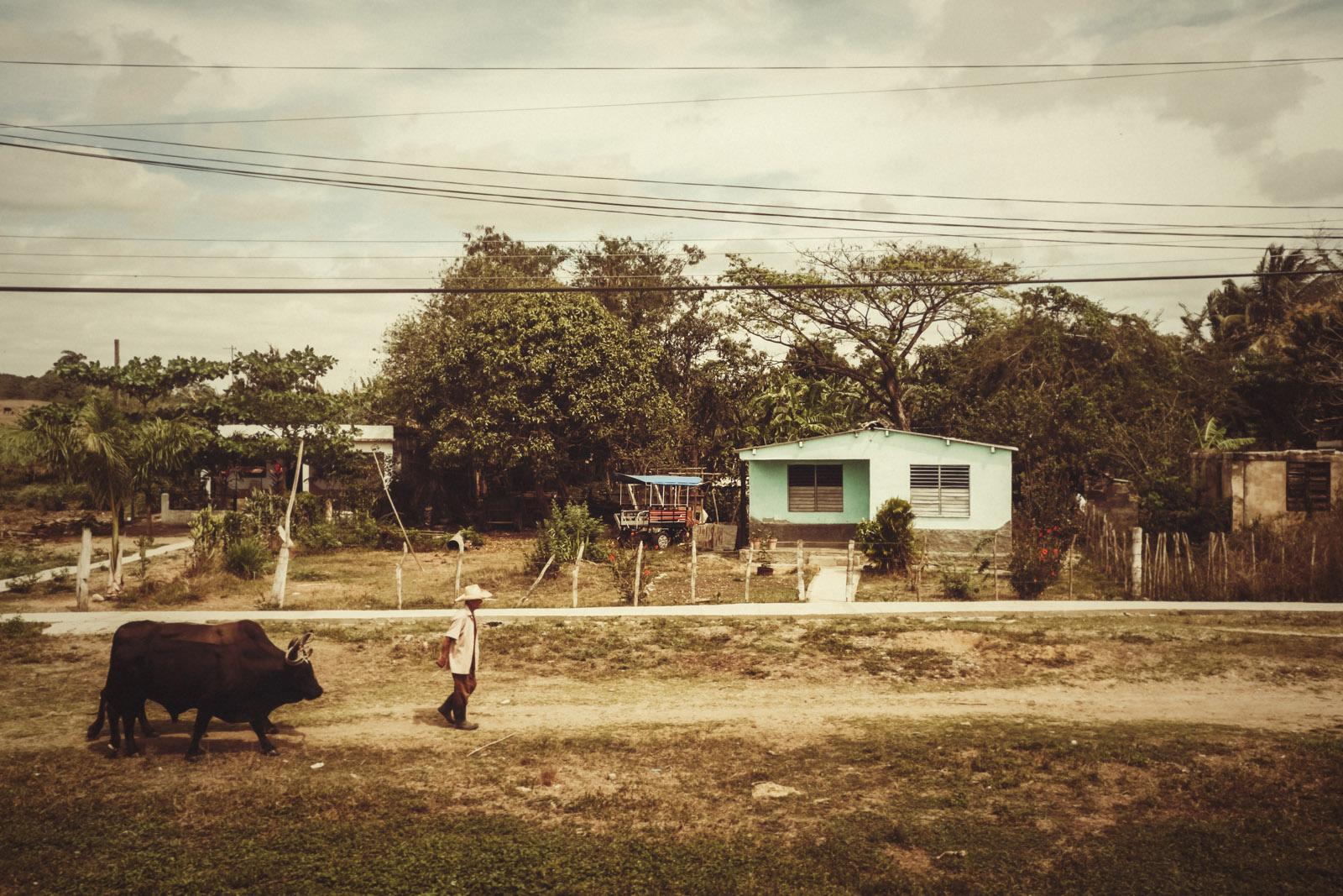 travel to trinidad 96